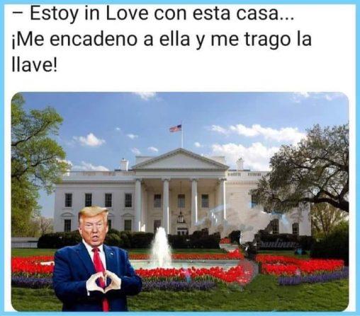meme donald trump in love